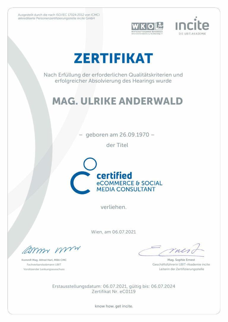 Förderung für EPUs - KMU Digital - Zertifikat Certified E-Commerce und Social Media Consultant